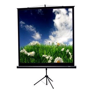 Where to find SCREEN PROJ 70 X70 in Merrillville